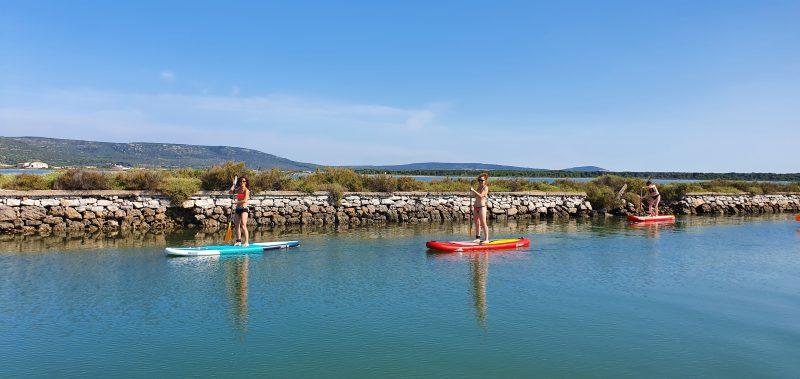 Découverte de la faune et de la flore à l'occasion d'une balade paddle